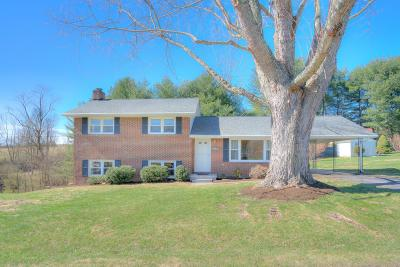 Radford Single Family Home For Sale: 7191 Meadowview Drive