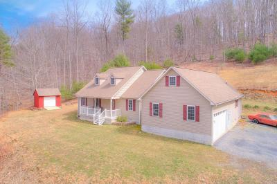 Pearisburg Single Family Home For Sale: 913 White Pine Road