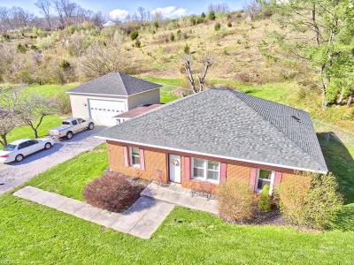 Giles County Single Family Home For Sale: 6167 Virginia Avenue