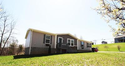 Christiansburg Single Family Home For Sale: 225 Mount Pleasant Drive