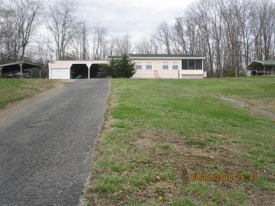 Pulaski County Single Family Home For Sale: 3384 Alpine Village Lane