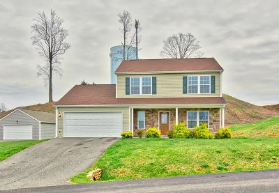 Christiansburg Single Family Home For Sale: 1530 Sherwood Drive