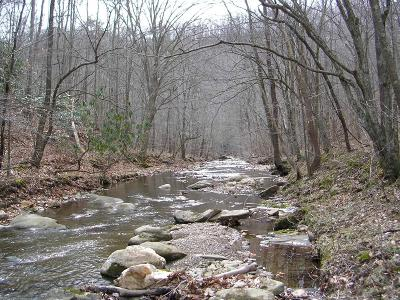Ferrum VA Residential Lots & Land For Sale: $275,000
