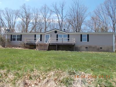 Radford Single Family Home For Sale: 3289 Dry Valley Road