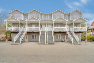 Christiansburg Condo/Townhouse For Sale: 3018 Shires Circle