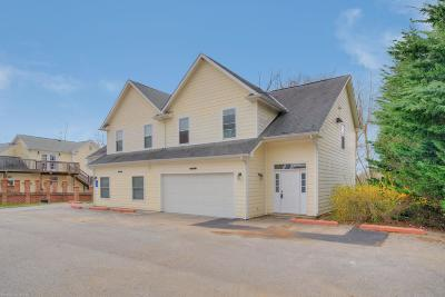 Christiansburg Condo/Townhouse For Sale: 3017 Shires Circle