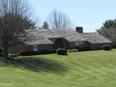 Wythe County Single Family Home For Sale: 145 Scenic View Circle