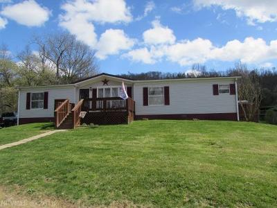 Wythe County Single Family Home For Sale: 3776 Grayson Turnpike