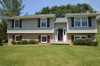 Christiansburg Single Family Home For Sale: 485 Overland Drive