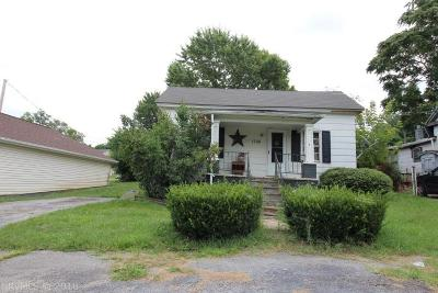 Radford Single Family Home For Sale: 1706 Second Street