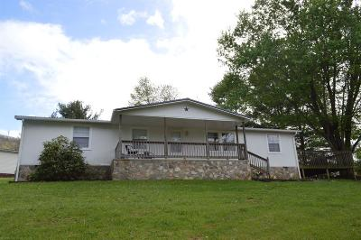 Giles County Single Family Home For Sale: 133 Mountain Lake Road
