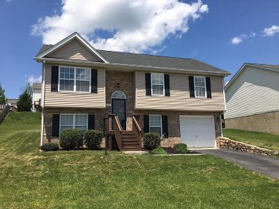 Montgomery County Single Family Home For Sale: 150 Sage Lane