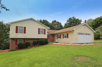 Wythe County Single Family Home For Sale: 295 Lakeview Drive