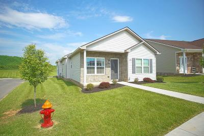 Christiansburg Single Family Home For Sale: 1804 Cub Circle
