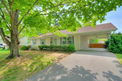 Radford Single Family Home For Sale: 710 11th Street