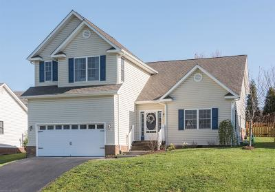 Christiansburg Single Family Home For Sale: 230 Meadow Drive