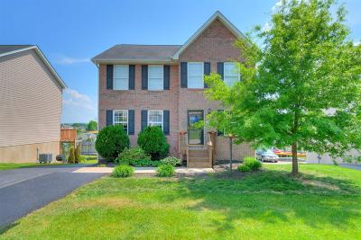 Christiansburg Single Family Home For Sale: 115 Wistaria Drive