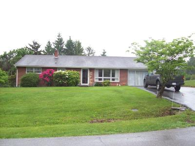 Christiansburg Single Family Home For Sale: 125 Ash Drives