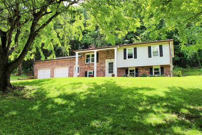 Wythe County Single Family Home For Sale: 574 Whispering Pines Rd Roads