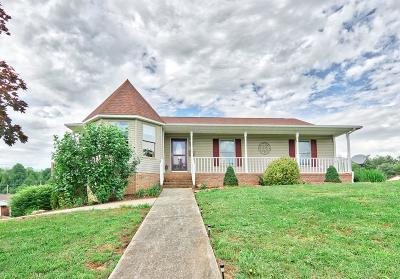 Giles County Single Family Home For Sale: 100 Huffman Drive