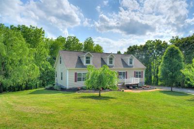 Radford Single Family Home For Sale: 712 Jordan Avenue