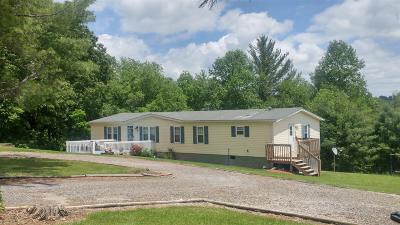 Riner Single Family Home For Sale: 603 Otey Road