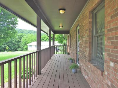 Giles County Single Family Home For Sale: 163 Richards Street