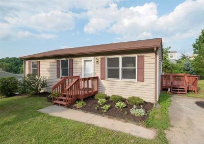 Montgomery County Single Family Home For Sale: 3350 Springview Drive