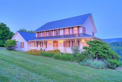 Giles County Single Family Home For Sale: 240 Horseshoe Farm Road