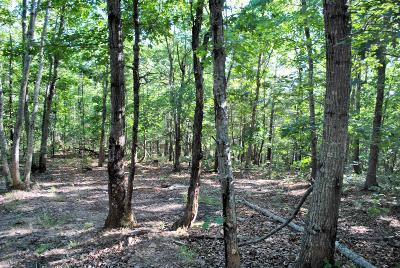 Christiansburg Residential Lots & Land For Sale: Tbd 7.162 Ac Hawley Road