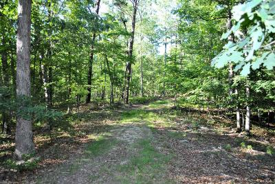 Christiansburg Residential Lots & Land For Sale: Tbd 11.163 Ac Hawley Road
