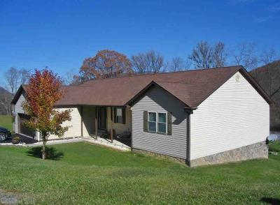 Giles County Single Family Home For Sale: 113 Valley View Drive