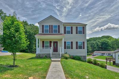 Christiansburg Single Family Home For Sale: 360 Robin Hood Drive
