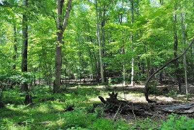 Residential Lots & Land For Sale: Tbd 19.8 Ac Woods On The Lake Road