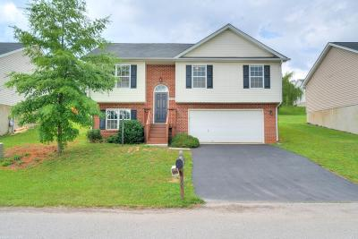 Christiansburg Single Family Home For Sale: 160 Sage Lane
