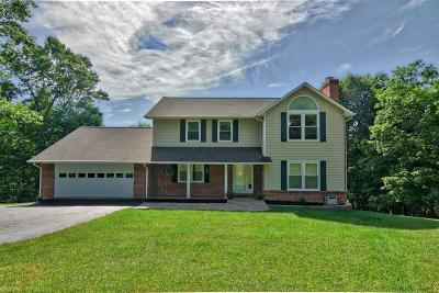 Christiansburg Single Family Home For Sale: 3325 Eaglebrook Drive