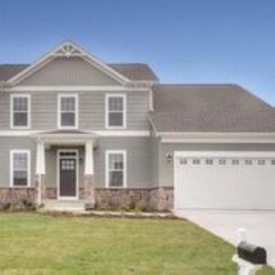 Radford Single Family Home For Sale: 6189 Heron's Landing Drive
