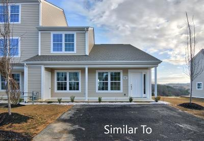 Christiansburg Condo/Townhouse For Sale: 200 Amber Circle