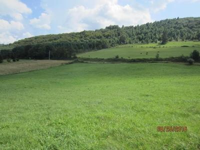 Meadows Of Dan VA Residential Lots & Land For Sale: $24,500