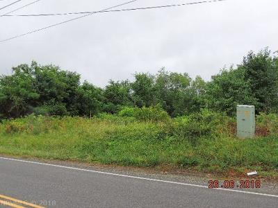 Pulaski Commercial For Sale: 3908 Bob White Boulevard