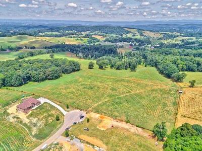 Christiansburg Residential Lots & Land For Sale: 2450 Hitching Post Drive