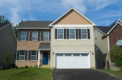 Christiansburg Single Family Home For Sale: 565 Dewdrop Lane