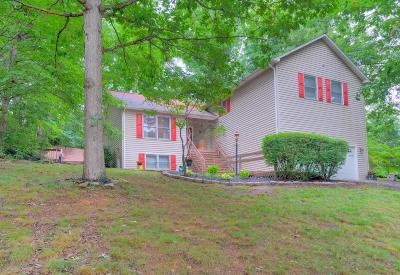 Christiansburg Single Family Home For Sale: 1300 Sherwood Drive