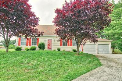 Christiansburg Single Family Home For Sale: 355 Overland Drive