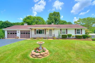 Floyd County Single Family Home For Sale: 695 Long Level Road