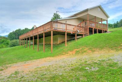 Giles County Single Family Home For Sale: 325 Doe Creek Road