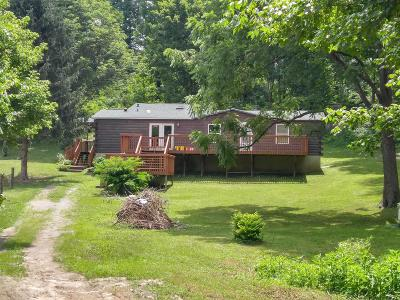 Pearisburg Single Family Home For Sale: 222 Tiny Hollow Road