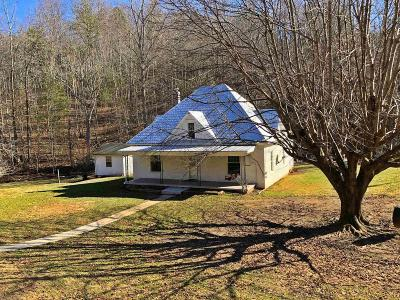 Pearisburg Single Family Home For Sale: 1630 Bearsprings Road