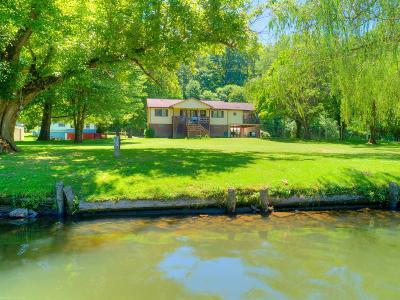 Pulaski County Single Family Home For Sale: 1741 & 1769 Julia Simpkins Road