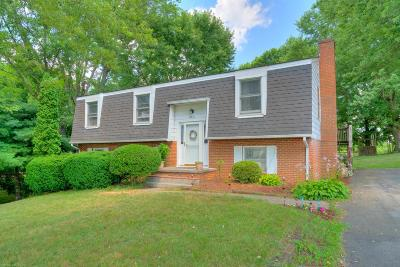 Montgomery County Single Family Home For Sale: 210 Rolling Hills Drive
